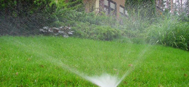 Как спасти газон и сад от засухи